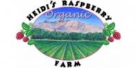Heidis Rasberry Farm.jpg